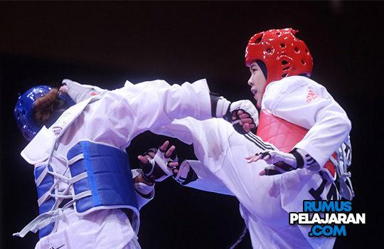 Materi Taekwondo Sejarah Teknik Dasar Janji Filosofi Istilah Materi Contoh Gerakan
