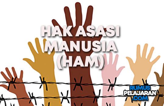 Pengertian HAM Definisi Ciri Macam Contoh dan Pelanggaran Hak Asasi Manusia di Indonesia